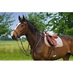 Collier de Chasse RIDING WORLD Top Class